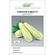 Семена Кабачок  Кавили F1, 30 семян  Nunhems Zaden, фото 1