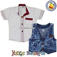 Рубашка короткий рукав и жилетка для мальчика от 1 до 4 лет (5354-3)