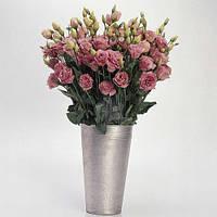 Эустома АВС 1 F1, розовая махровая, 10 гранул