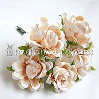 "Букет роз ""Аве Мария"" 3,5 см, бежевые"