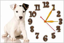 Часы настенные Z44 30х45 см