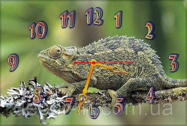 Часы настенные Z46 30х45 см