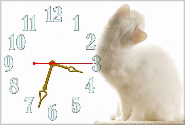 Часы настенные Z52 30х45 см