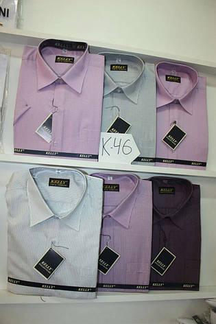 Рубашка с коротким  рукавом Kelly, фото 2