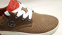 Обувь мужская кожаная летняя Lacost
