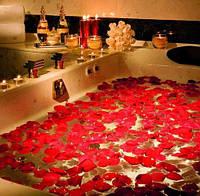 Лепестки роз красные 150 шт