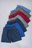 Чоловічі шорти в клітинку (плащівка), блакитного кольору, фото 5