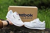 Женские кроссовки Reebok (белый)