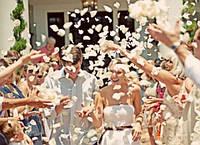 Лепестки роз белые 150 шт