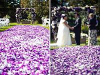 Лепестки роз фиолетовые 300 шт