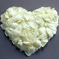 Лепестки роз белые 600 шт
