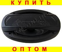 Акустика овалы Pioneer TS-A6995R