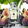 JO MALONE Wild Fig & Cassis одеколон - тестер, 100 мл