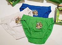 Набор детских трусиков для мальчиков (3 шт) Ниндзя (Венгрия)
