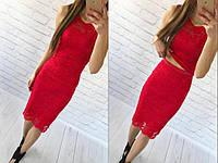 Костюм летний  стильный юбочный из красивого гипюра  (6 цветов)