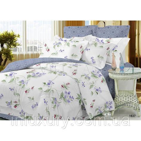 """Комплект постельного белья """"Viluta-Поплин"""", двуспальный, фото 2"""