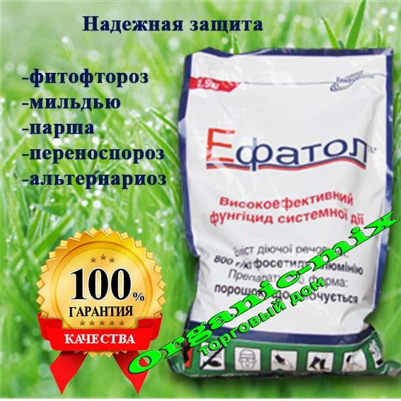 Фунгицид Эфатол (аналог Альет) цена за 1 кг (фасовка 2,5 кг)