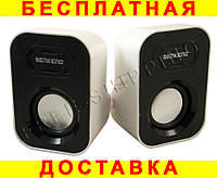 Колонки SENKENO SK-288