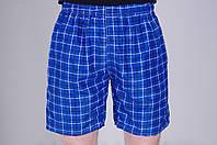 Мужские летние шорты цвета электрик (клетка). Хмельницкий
