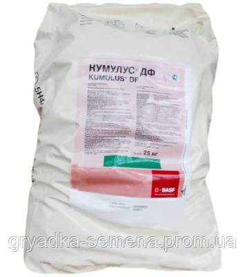 Фунгицид Кумулюс® ДФ Басф (Basf) - ВГ, 15 кг