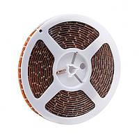Світлодіодна стрічка 3528 60Led/m IP65 12V 4,8 Вт/м кольорова REN
