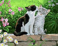 Картина-раскраска Пара котят Худ Персис Клейтон Вейерс (BRM3251) 40 х 50 см