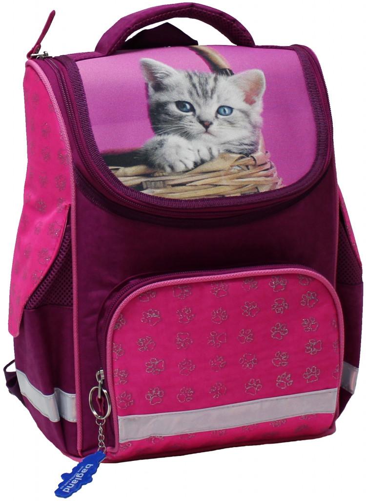 Школьный рюкзак для девочек Bagland, Успех 00551702-pink-1 12 л