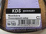 Маникюрный набор KDS (6 предметов), фото 2