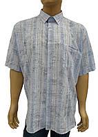Мужская рубашка хлопок, фото 1