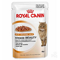 ROYAL CANIN INTENSE BEAUTY Jelly корм для кошек старше 1 года для поддержания красоты шерсти (в желе)  0,085КГ