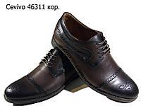 Туфли мужские классические  натуральная кожа коричневые на шнуровке  (46311), фото 1