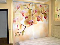 Шкаф купе с фотопечатью ветка орхидеи