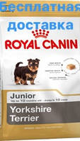 Роял Канин для щенков йоркширских терьеров (Royal Canin Yorkshir Terrier junior)