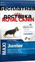 MAXI JUNIOR (Корм для щенков с 2 до 15 месяцев)
