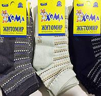 Носки детские летние мальчик «Хома» размер 16-18 (4-5 лет)