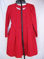 """Платье для девочки (122-140 см) (коттон) горошек Розница """"Odessa Mama"""" M-629"""