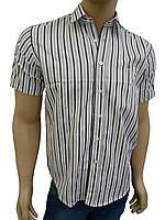 Молодежная  хлопковая рубашка