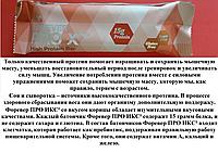 Органические Протеиновые Батончики с Корицей, Форевер ПРО ИКС² (Корица), США, Forever PRO X², 45 г