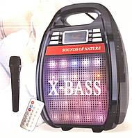 Колонка с радиомикрофоном Golon 810BT (USB/Bluetooth/FM/аккумулятор)