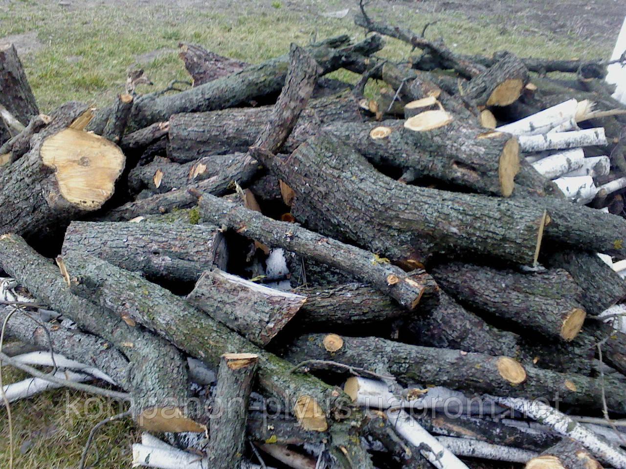 Удаление сада. Спил плодового сада. Валка фруктовых деревьев. Срезание деревьев в саду.