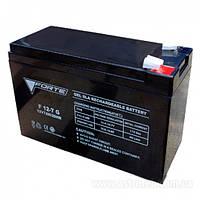Аккумуляторная батарея FORTE F12-7 (тип AGM)