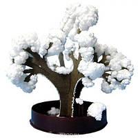"""Японський сад кристалів """" Сніжний бонсай"""""""