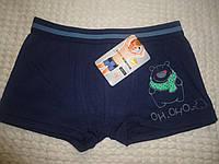 Трусы мальчик ,шорты хлопок 6-8 лет ( М ), фото 1