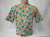 Мужская рубашка с коротким рукавом Scout