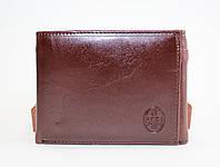 Мужской кошелек-скрепка P.T.K-1(черный,коричневый)