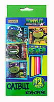 Карандаши 12 цв. Ninja Turtles 290326