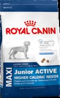 Сухой корм для активных щенков крупных собак (вес взрослой 26-44 кг) Royal Canin Maxi Junior Active 15 кг. - Зоомагазин ZooDostavka в Киеве