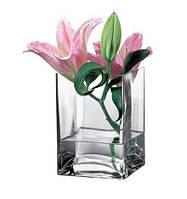 Ваза стеклянная 14 см Pasabahche Flora 80135