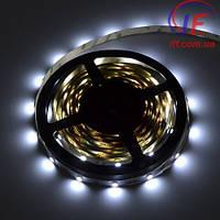 Светодиодная Лед LED лента 5050 30 шт/м  RGB  IP 54