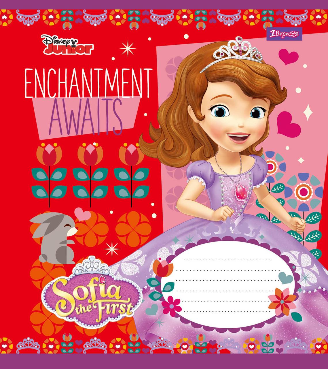 """Набор школьных тетрадей 10 штук 1 Вересня """"Sofia Color"""" 12 листов в косую линию 760443"""